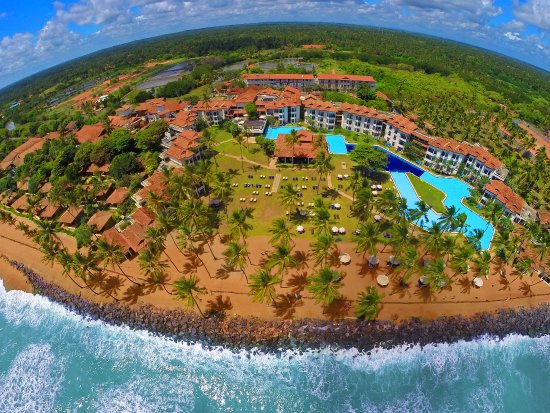 Carte Dengue Sri Lanka.Weather In October Review Of Club Hotel Dolphin Waikkal Sri