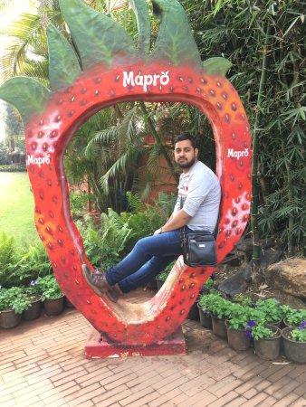 Mapro Garden Pune Quantum Computing