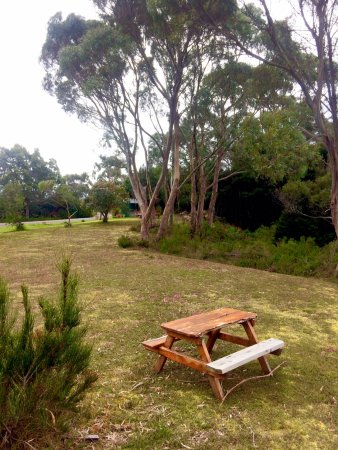 Strahan Wilderness Lodge: One of our picnic/ outdoor relaxing areas