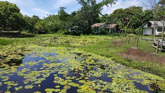 Pousada Lagoa: 20180129_105340_large.jpg