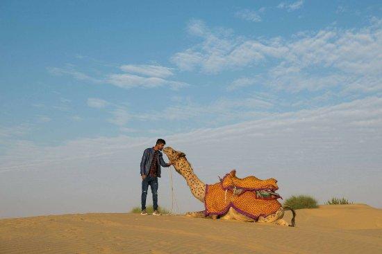 Backpacker Desert Tours