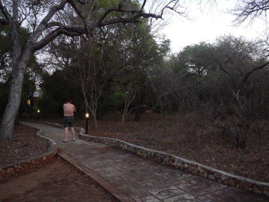 Marloth Park, África do Sul: caminho para acessar a área principal do hotel