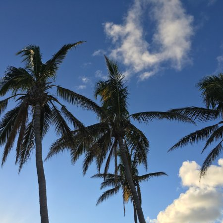 Sibonne Beach Hotel: photo1.jpg