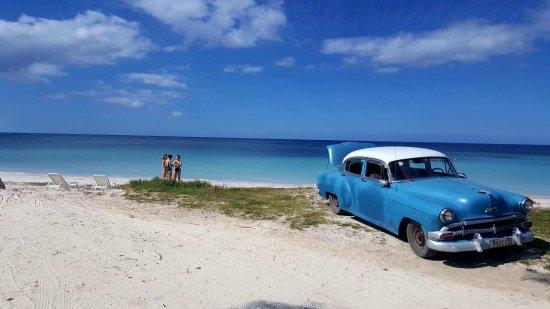 Vivez Cuba
