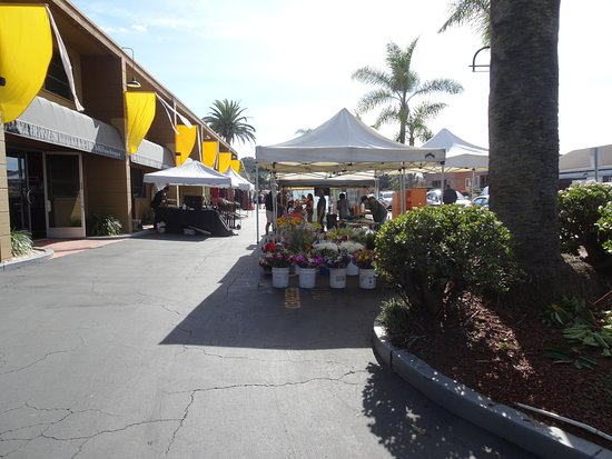 Cedros Design District: The beginning of the market