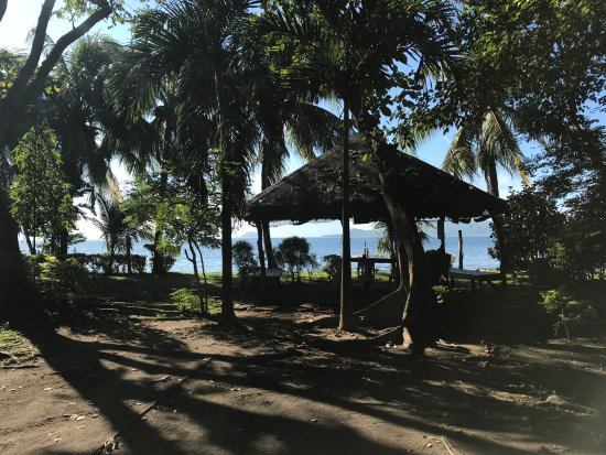 how to go to taal lake yacht club