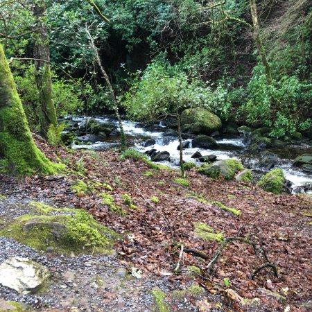 Torc Waterfall : photo2.jpg