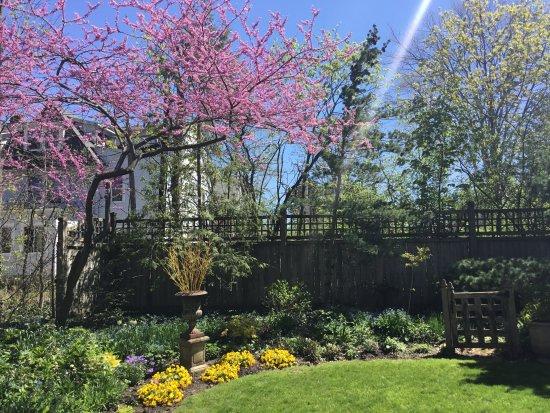 Oberlin, Огайо: Spring
