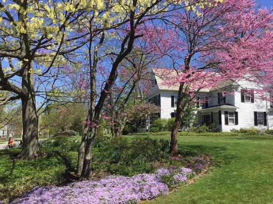 Oberlin, Огайо: The Ivy Tree Inn and Garden