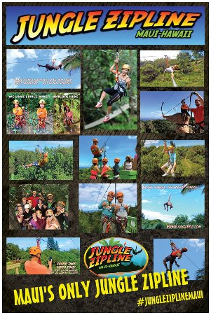 Haiku, HI: jungle_zipline_maui
