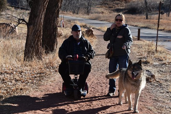 Colorado Wolf Adventures: Even someone in a scooter can enjoy the Wolf Adventure.