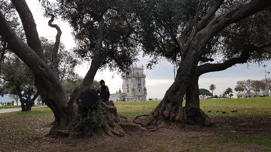 Torre de Belem Garden Photo