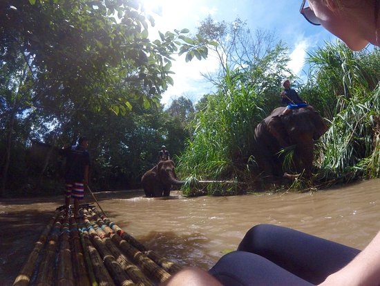Untouched Thailand : bamboo rafting