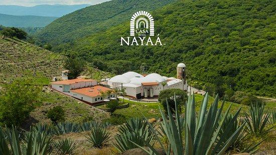 Casa Nayaá Mezcal