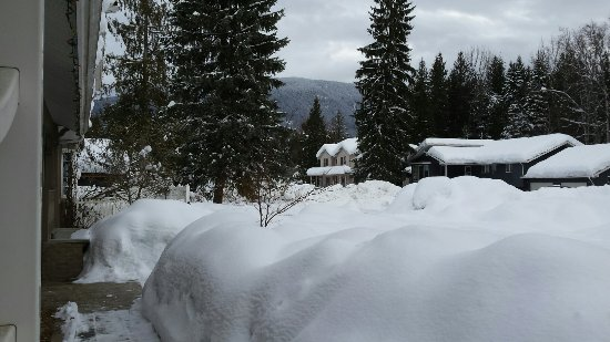 Alpenrose Bed and Breakfast: 20180206_095428(0)_large.jpg