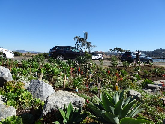 Del Mar, CA: The love that went into the plantings is evident