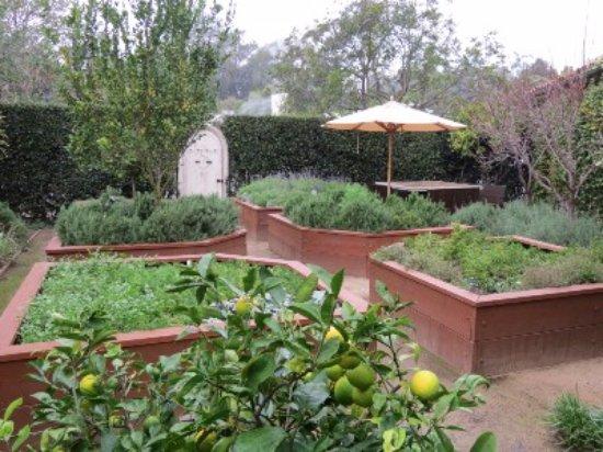 Four Seasons Resort The Biltmore Santa Barbara: Herb Garden at Biltmore