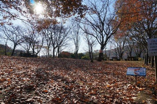 Himeji City Shizen Kansatsuno Mori