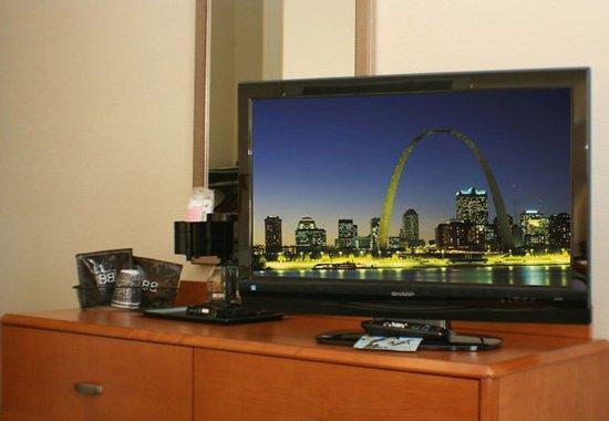 Fenton, Missouri: Guest room