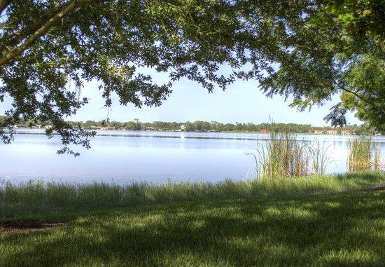 Sebring, فلوريدا: Other