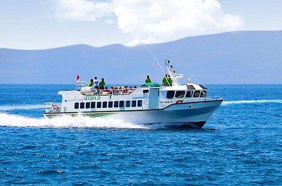 Transferência de barco Eka Jaya de...