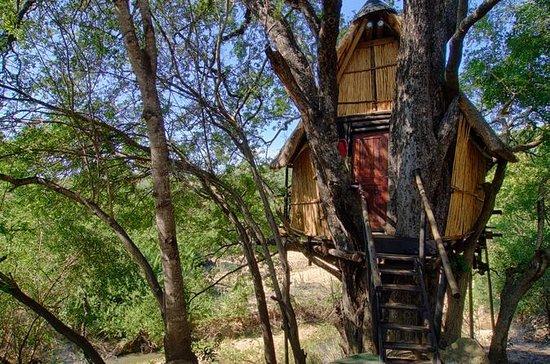4 Tage Lodge und Treehouse Krüger...