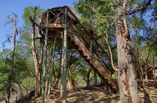 3 Day Lodge and Treehouse Kruger...
