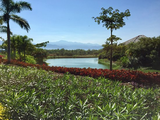Mayan Palace Nuevo Vallarta: Beautiful gardens with mountains of central Mexico in the background