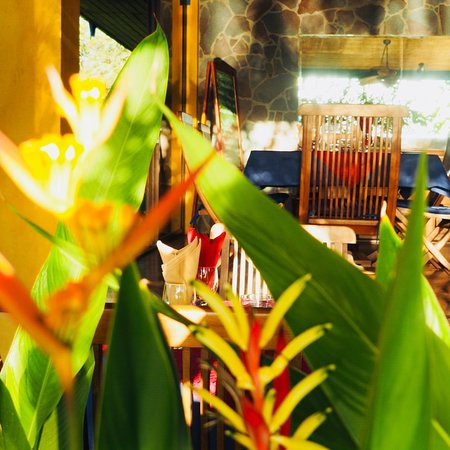 Ostional, Costa Rica: photo3.jpg