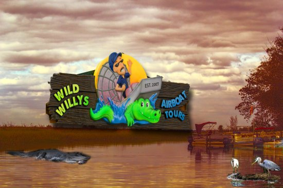 Wild Willy's Airboat Tours: Experience the sights and sounds of the swamp.