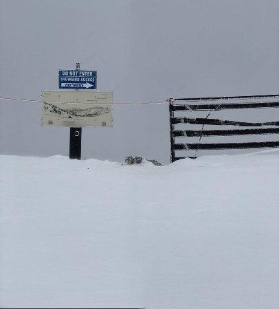 Alta Ski Resort: To the Gate of Snowbird