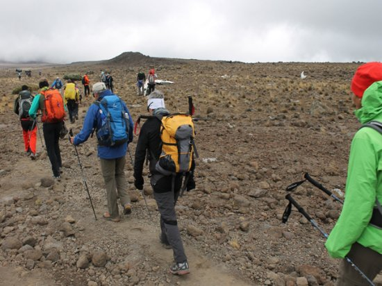 About Kilimanjaro Treks & Safaris