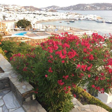Mykonos View Hotel: photo3.jpg