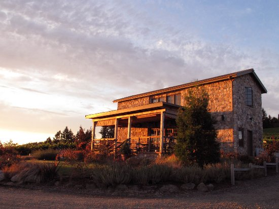 Yamhill, OR: View of the tasting room, glowing in the golden light of an Oregon sunset.