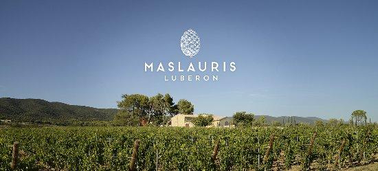 Domaine de MasLauris AOP Luberon Vente et Dégustation au caveau