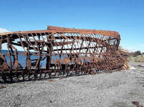 Tierra del Fuego, Chile: 20180207_094002_large.jpg