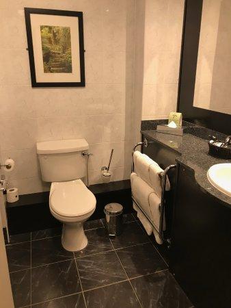 Ashling Hotel: Bathroom
