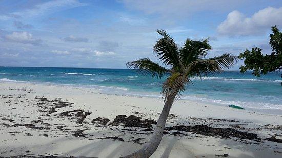 Breezy Hill Exuma Bahamas: 20180115_142414_large.jpg