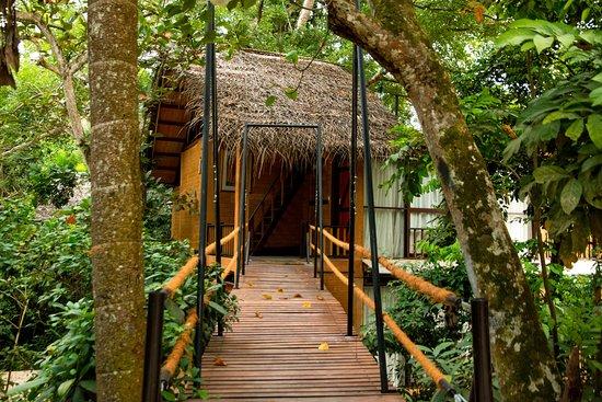 Sanibel Island Hotels: JUNGLE VILLAGE BY THAWTHISA $171 ($̶2̶1̶8̶)