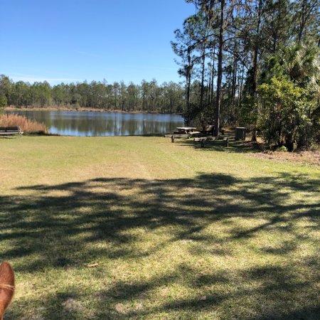 Parrish, FL: photo2.jpg