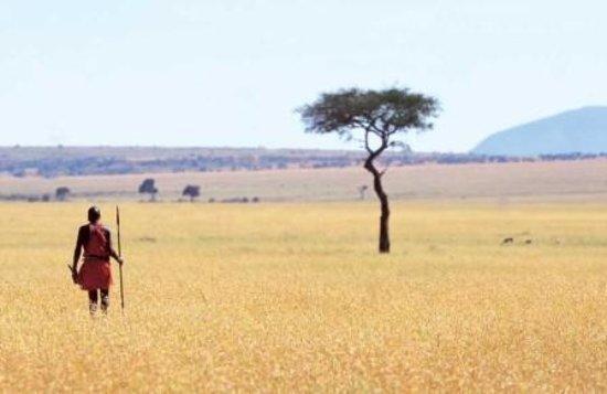 Arusha, Tanzania: Maasai man looking at the horizon in Maasai Mara