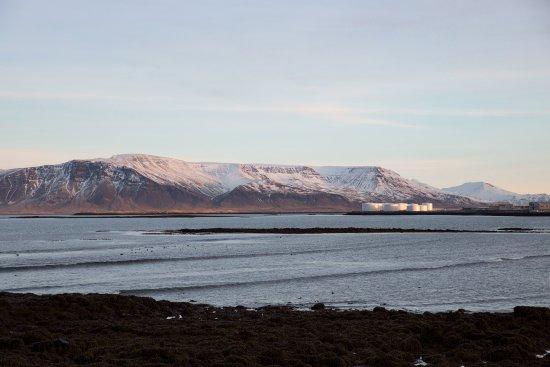 Seltjarnarnes, Islandia: Arna café has a fabulous ocean view