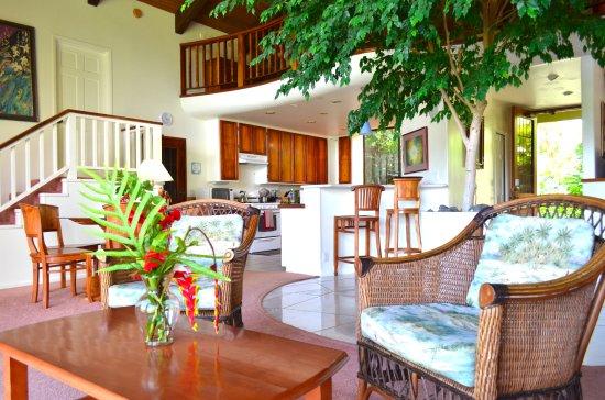 Villa Akua Tripadvisor