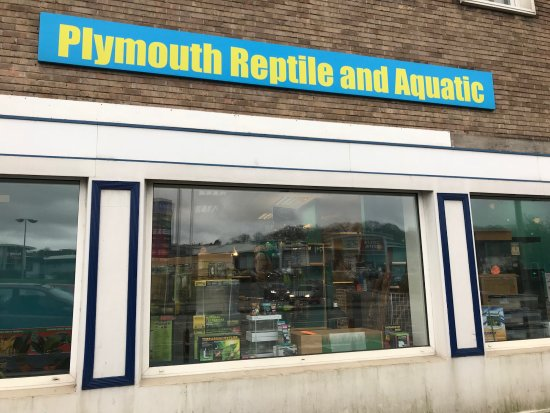 Plymouth Reptile and Aquatic - Pet Shop
