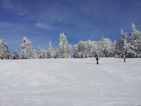 Cerna v Posumavi, Tschechien: 20180206_132806_large.jpg