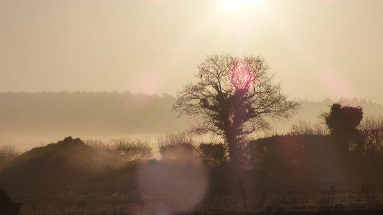 Burnham Market, UK: Misty sunrise