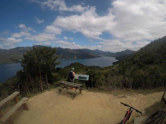 Anakiwa, Nueva Zelanda: GOPR0934_large.jpg