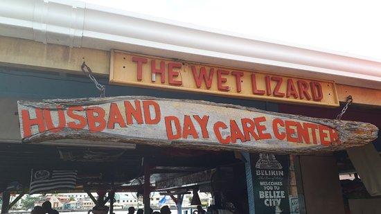 Wet Lizard: 20180208_131717_large.jpg