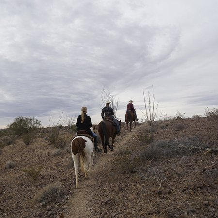 Yucca, AZ: photo5.jpg