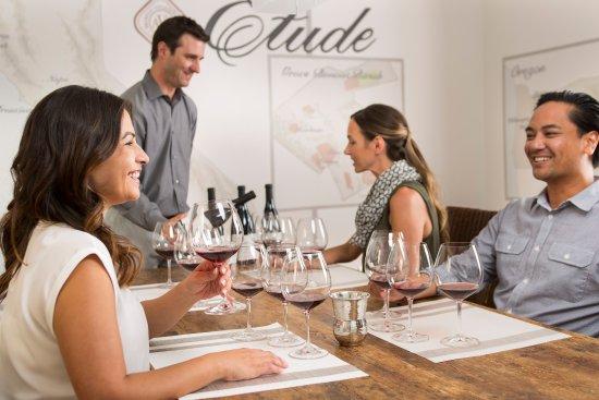 Napa Valley, CA: Study Pinot Noir